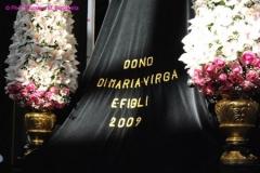 DSC_5249